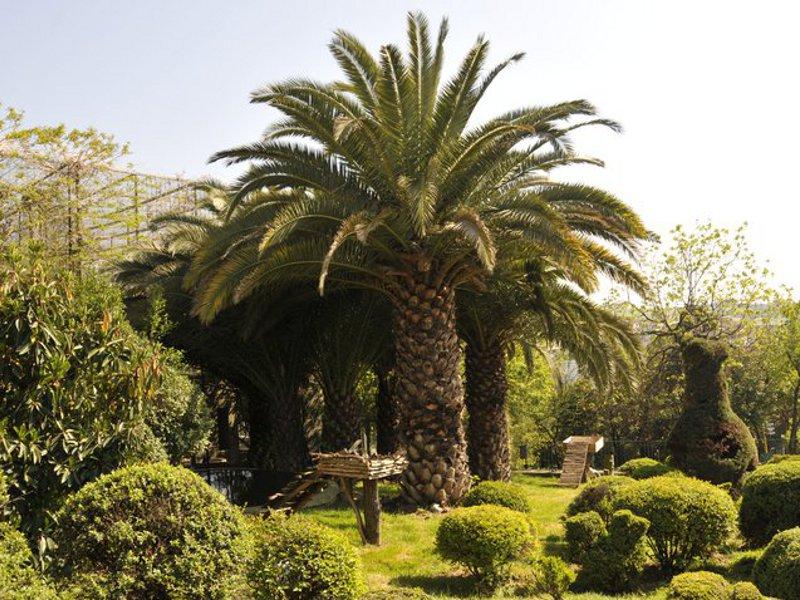 Grădina Zoologică [POI]
