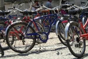 Curse cu bicicleta