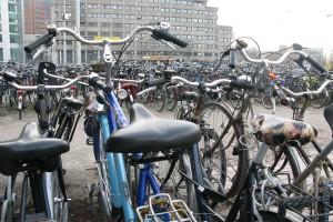 Biciclete in Haga