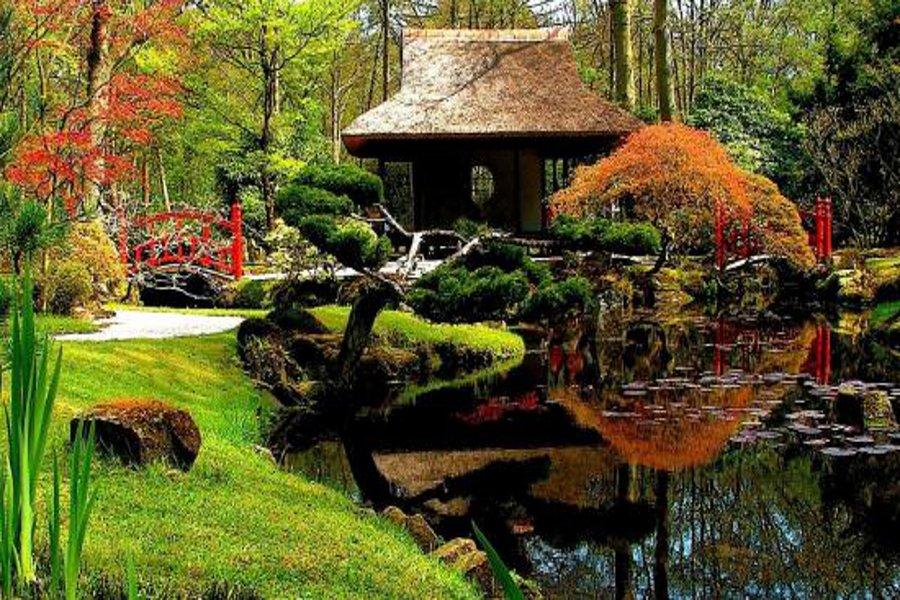 Parcul japonez din Haga (Clingendael Park) [POI]