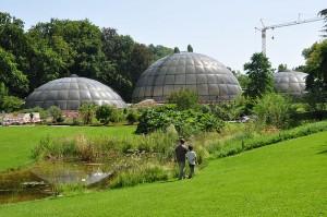 800px-Zürich_-_Weinegg_Botanischer_Garten_IMG_1863