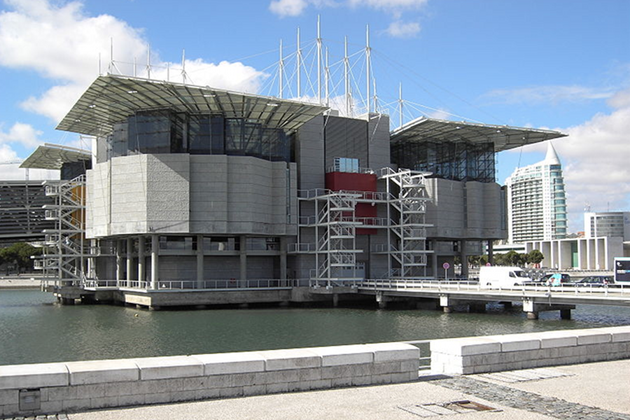 Acvariu Lisabona (Lisbon Oceanarium) [POI]