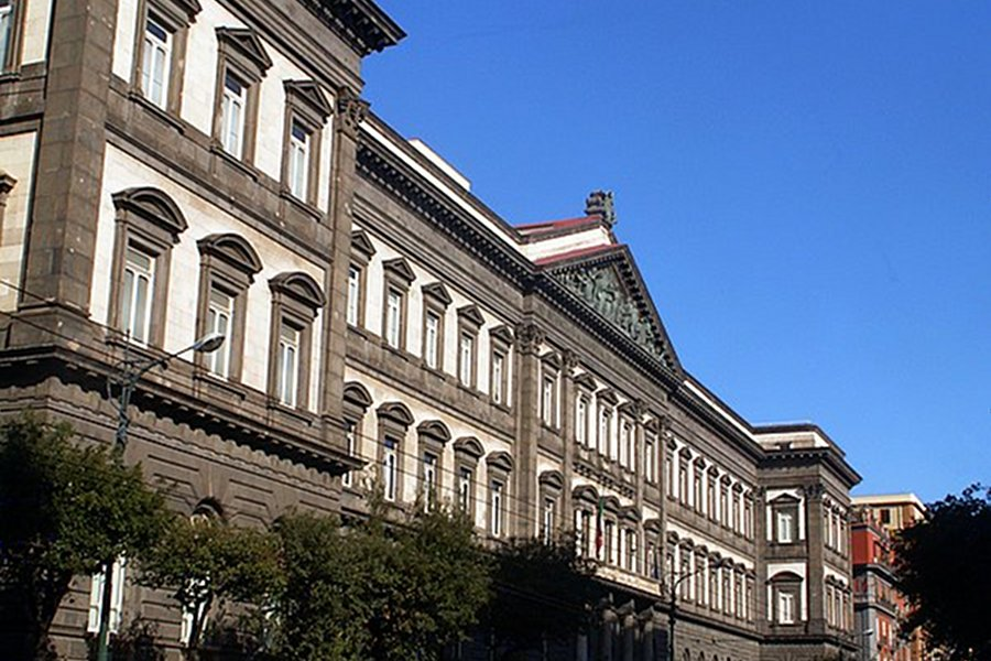 Federico II University of Naples (Universitatea Federico II din Napoli) [POI]