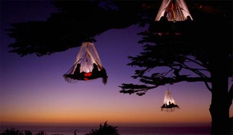 Wow! Camping la înălţime…. în copaci!