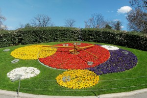 Ceasul din flori