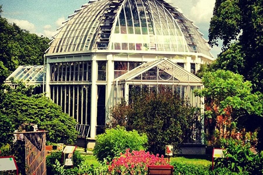 Sera şi Grădina Botanică (Conservatoire et Jardin Botaniques) [POI]
