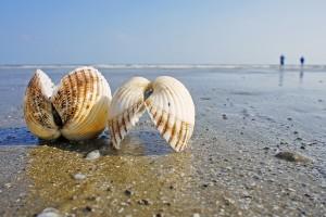 Vacanta de vara pe plaja