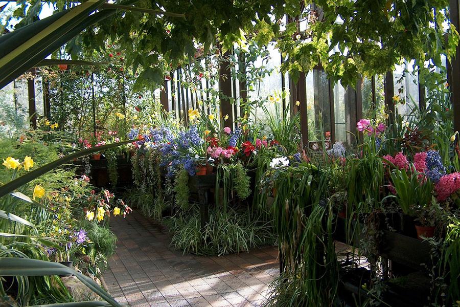 Grădina Botanică (Glasgow Botanic Gardens) [POI]